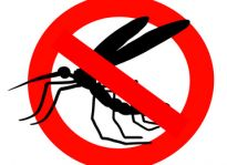 Stop Animali ed Insetti