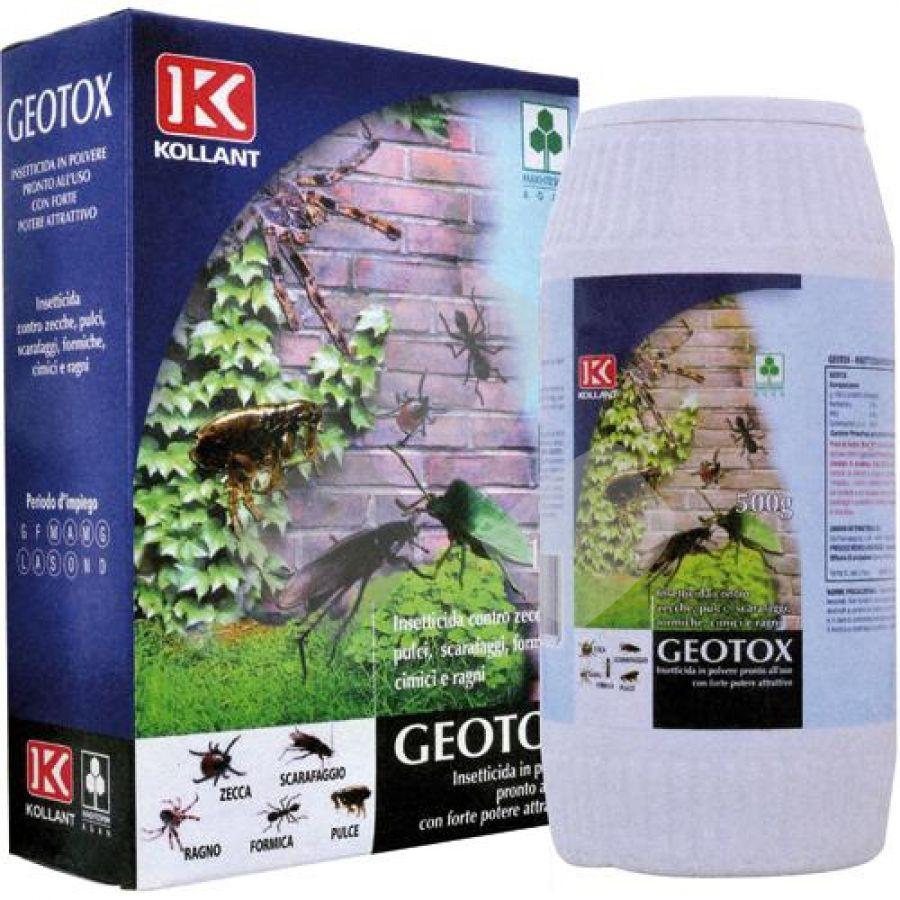Insetticida Antiformiche/scarafaggi In Polvere Geotox 500gr